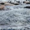 ペナン島水不足!で緊急事態 雨不足が原因のニュース2019年1月16日